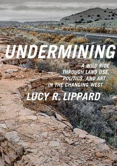 Image result for undermining lucy lippard